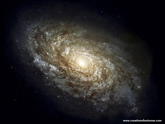 File:Spiral Galaxy jpg.jpg