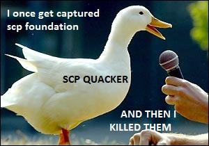 File:Duck-quack.jpg