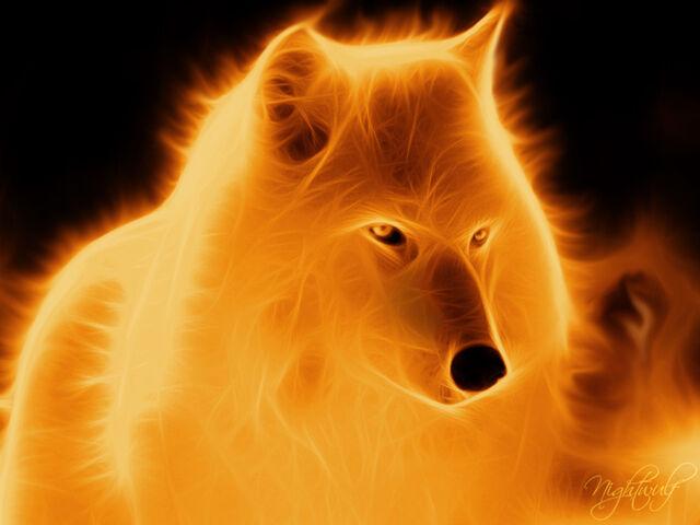 File:Fire wolf by sigg6-d59k8c5.jpg