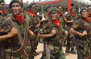 Royal Venezuelan Militia at the Battle of Lake Maracaibo