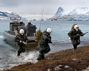Vazaha amphibious landing