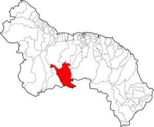 Coeroeni municipality map