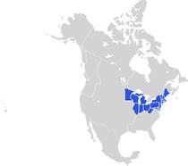 Locator Map of the United States (PolCri)