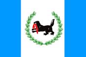 Flag of Irkutsk Rep