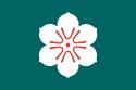 Aichu Flag