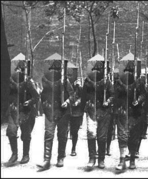 Mirkuleon infantry