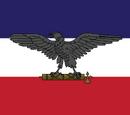 Allied Revolutionary War