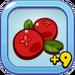 Nutritious Cranberry+9