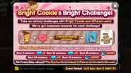 Bright Cookie Challenge Newsletter
