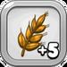 Good Year's Wheat Harvest 5