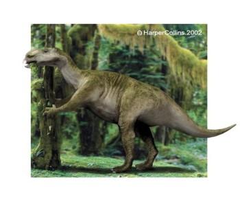 File:350px-Muttaburrasaurus.jpg