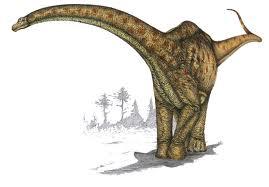 File:Futalongkosaurus.jpg