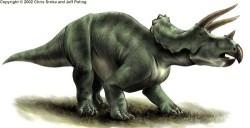 File:250px-Triceratops.jpg