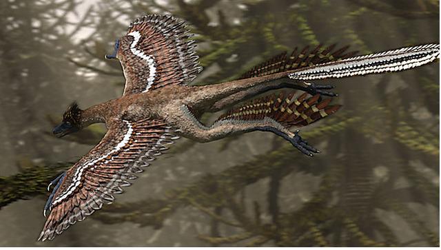 File:Microraptorflies.png