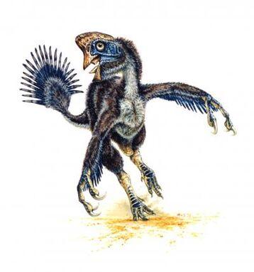 Hagryphus1