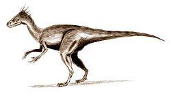 Ornitholestes3