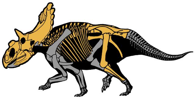 File:Kosmoceratops richardsoni.png