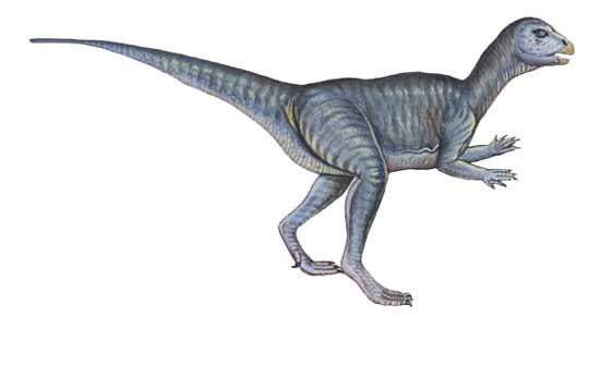File:Pcab007 abrictosaurus.jpg