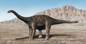 File:300px-Spinophorosaurus NT.jpg