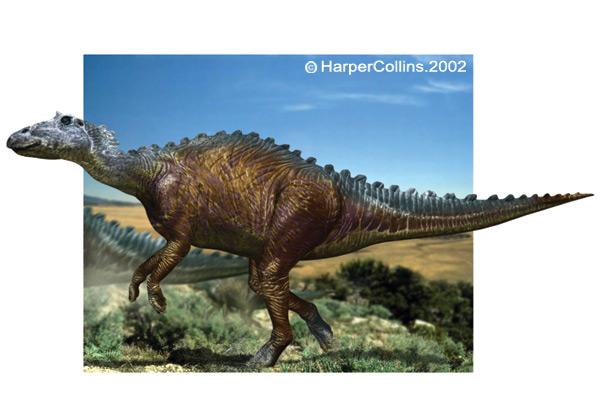 File:Maiasaurus.jpg