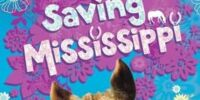 Saving Mississippi