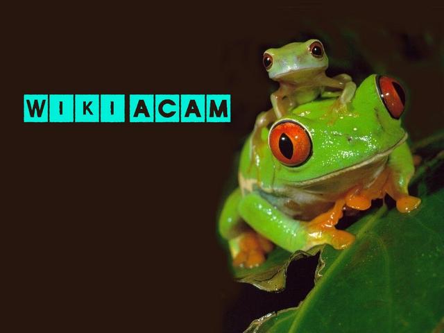 Archivo:Wikia-Visualization-Add-1,esacam.png