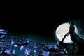 Miniatura de la versión de 00:21 31 jul 2013
