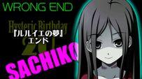 Sachi-wrong-end-2u