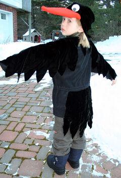 Raven-back