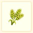 File:Barley.png