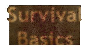 File:Survivalbasics.png