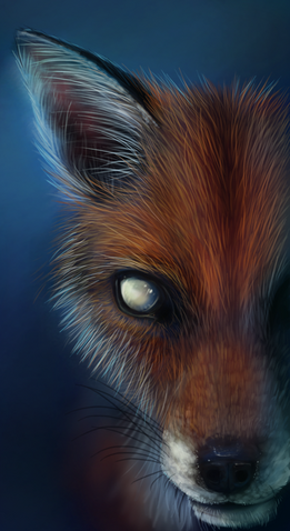 File:Big Ugly Ol Fox by Foxbane.png