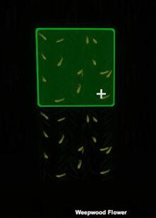 Creativerse Weepwood Flower glowing001