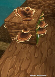 Creativerse Brown Mushroom4004