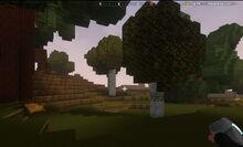 Creativerse Woodlands0101