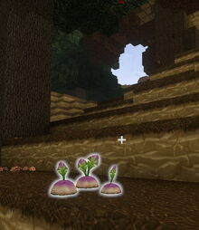 Creativerse Turnips Forest tundralike300