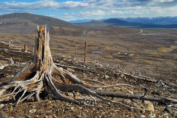 File:Deforestation.jpg