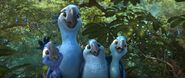 Rio 2 Jewel and Kids