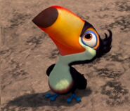 Marco Toucan from the story