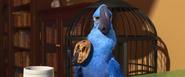 (BB 41) Blu