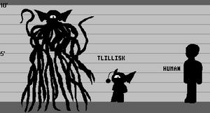 Tlillisk Lineup