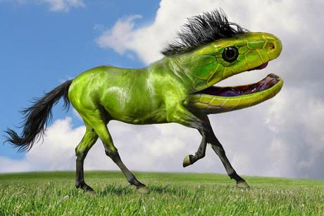 File:SNAKE HORSE.png