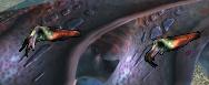 C3cuttlefish ingame