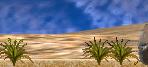 C3desertgrass ingame