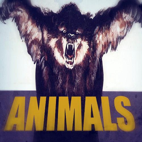 Category-Animals