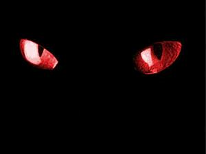 Cat Eyes by ZeLLzGoDDeSs