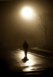 Under the Street Light