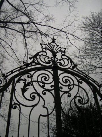 File:Scary Gate.png