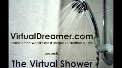 The Virtual Shower-0