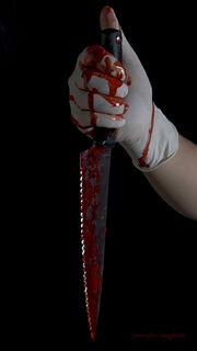 Bloody knife009copy